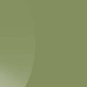 667hg-olive-green
