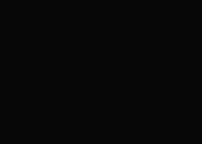 slb9005