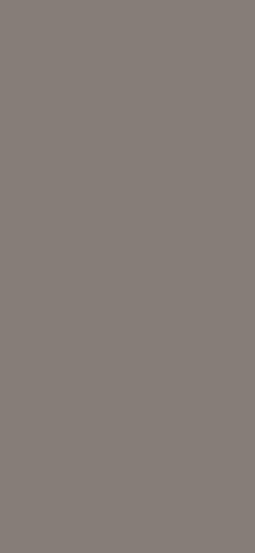 ALVIC ZENIT SUPERMATT - BASALTO A2176-3406