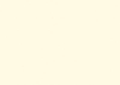 EGGER - ALABASTER WHITE U104 ST9