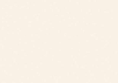 EGGER - PORCELAINE WHITE W1200 ST9