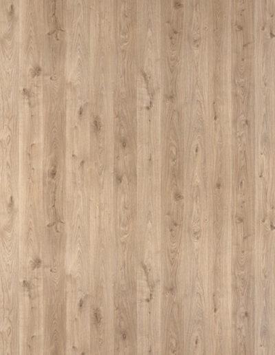 H162 Minnesota Oak natura